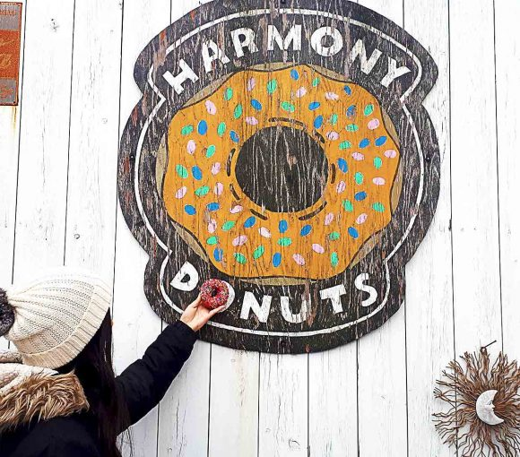 Harmony Donut Shop - Vancouver local donut shop - North Vancouver - Vancouver
